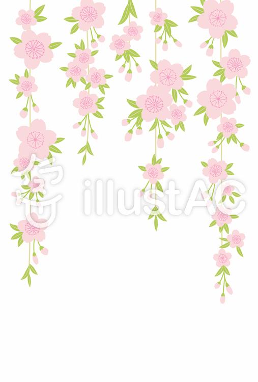 桜背景11のイラスト