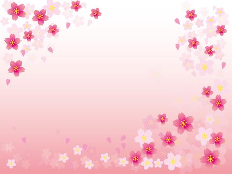 봄 프레임 001