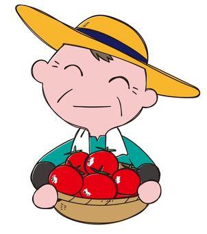 토마토 농가