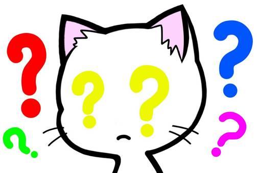 Hatena Why cat wonder