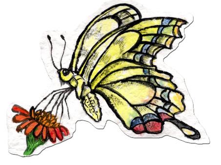 Butterflies sucking honey