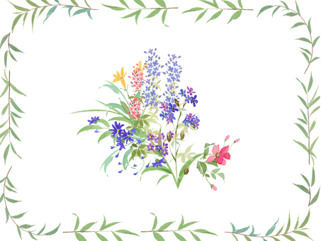 Wild flowers and frames