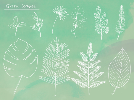 Various leaves hand-drawn wind illustration 01