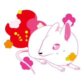 쥐와 매화