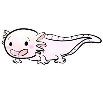 Wooper looper (pink)