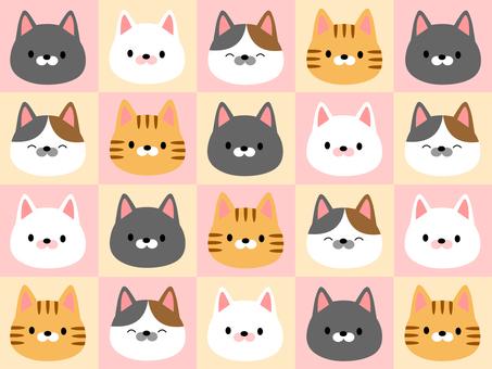 很多貓01