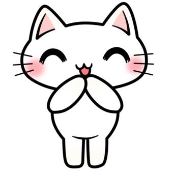 笑顔な白猫ちゃん