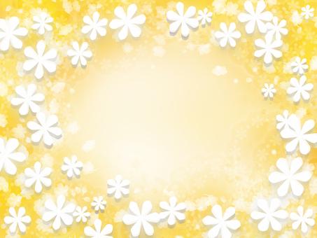 黃色背景花