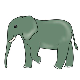 Elephant _01