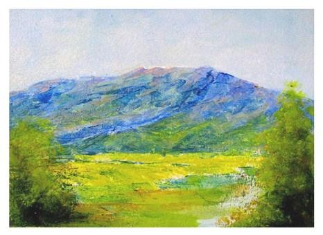 Landscape (rape flower field distant view)