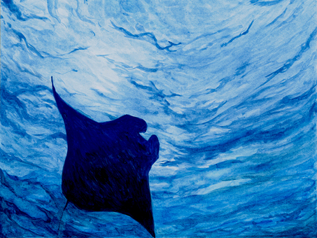 Watercolor Manta
