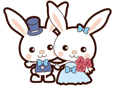 Bridal rabbit