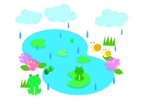 Rainy season pond 2