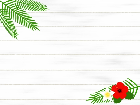 White plate and hibiscus background material