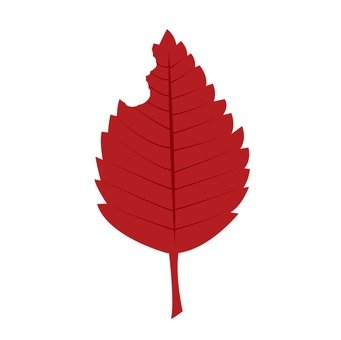 Leaves (red)