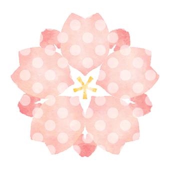 Sakura 14