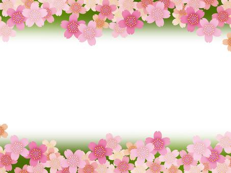 Frame - Sakura 01