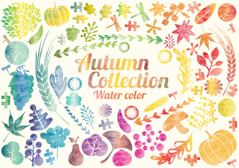 Design: watercolor and autumn collection