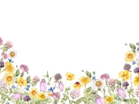 Flower frame 112 - Flower frame frame of field