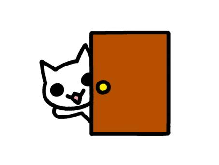 Door cat white
