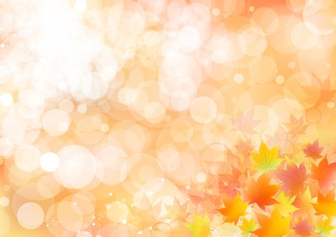 Fall image material 64