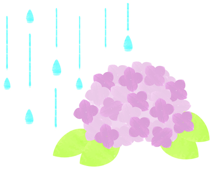 Rainy season _ hydrangea watercolor breeze