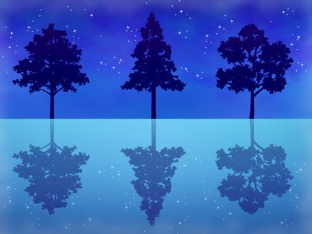 Night Tree Silhouette