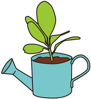 미니 식물