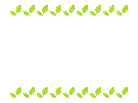 Fresh green leaf frame