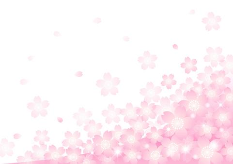 벚꽃의 프레임 40