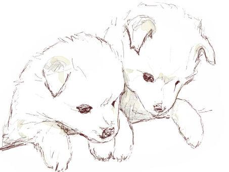 Puppy dog illustration