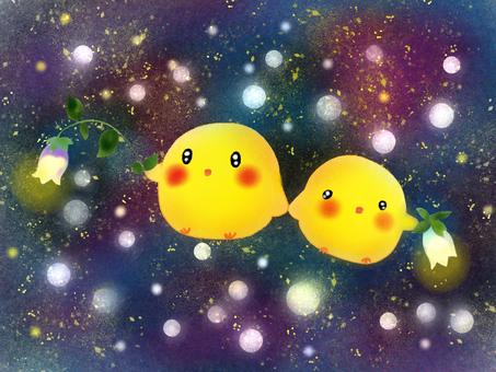 Chicks with fireflies and fireflies