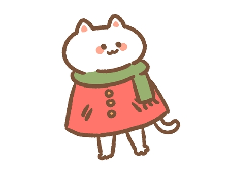 Cat in winter clothes