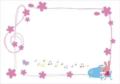 Rabbit music concert - Sakura Sakura