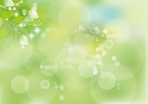 Glittering leaf 4
