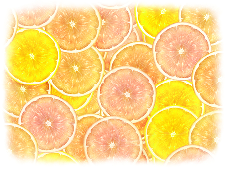 Citrus 3 kinds _ rounded background