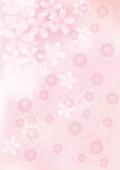 벚꽃의 꽃 53