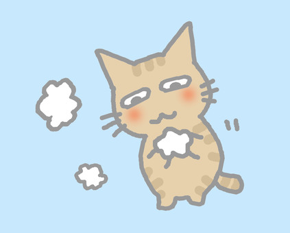 Cat washing hands