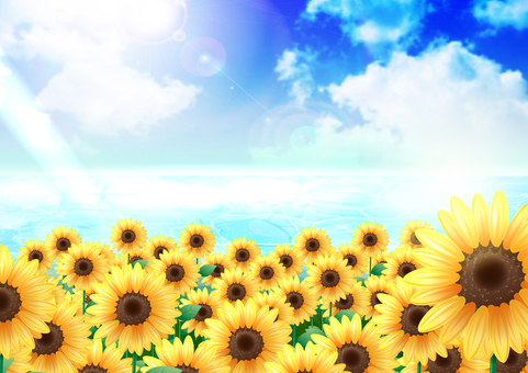 Sunflowers and the sea and the sky