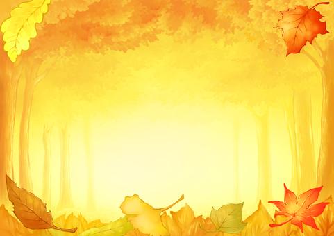 낙엽과 단풍