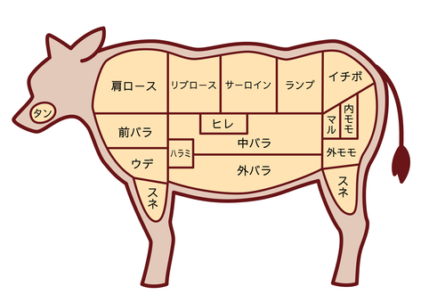 Illustration of the part of beef