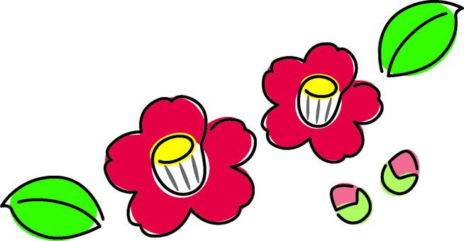 겨울 꽃 동백 2