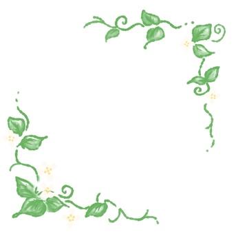프레임 _ 흰 꽃