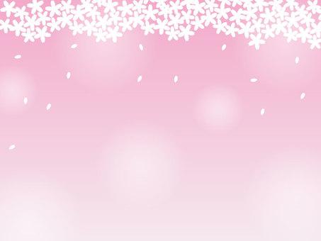 봄, 벚꽃 프레임