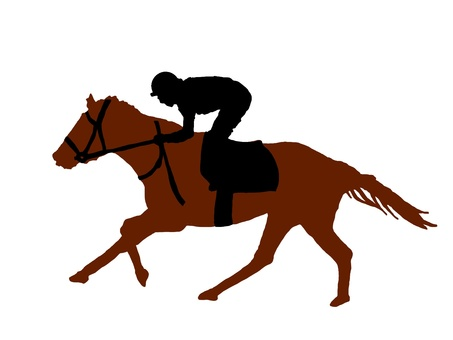 Horse racing racehorse thoroughbred