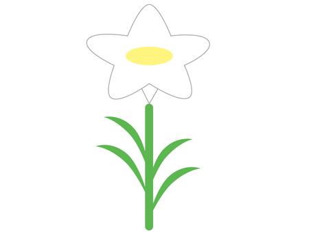 白花〜水仙〜