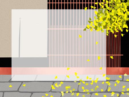 京都的秋天(銀杏)
