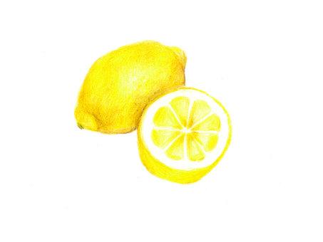 Lemon (color pencil drawing)