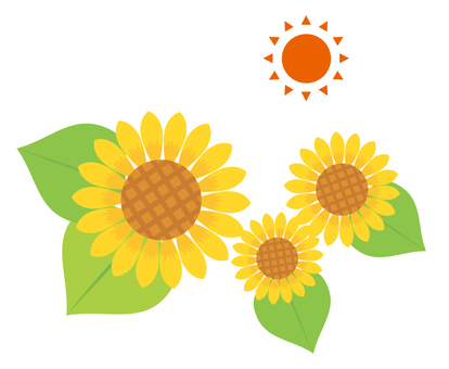 Sunflower and sun illustration 01