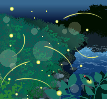 Natural scenery fireflies summer illustration